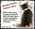 buonanotte-amore-mio-frase-bella-gatto-facebook