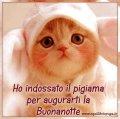gattino-con-pigiama-per-la-buonanotte