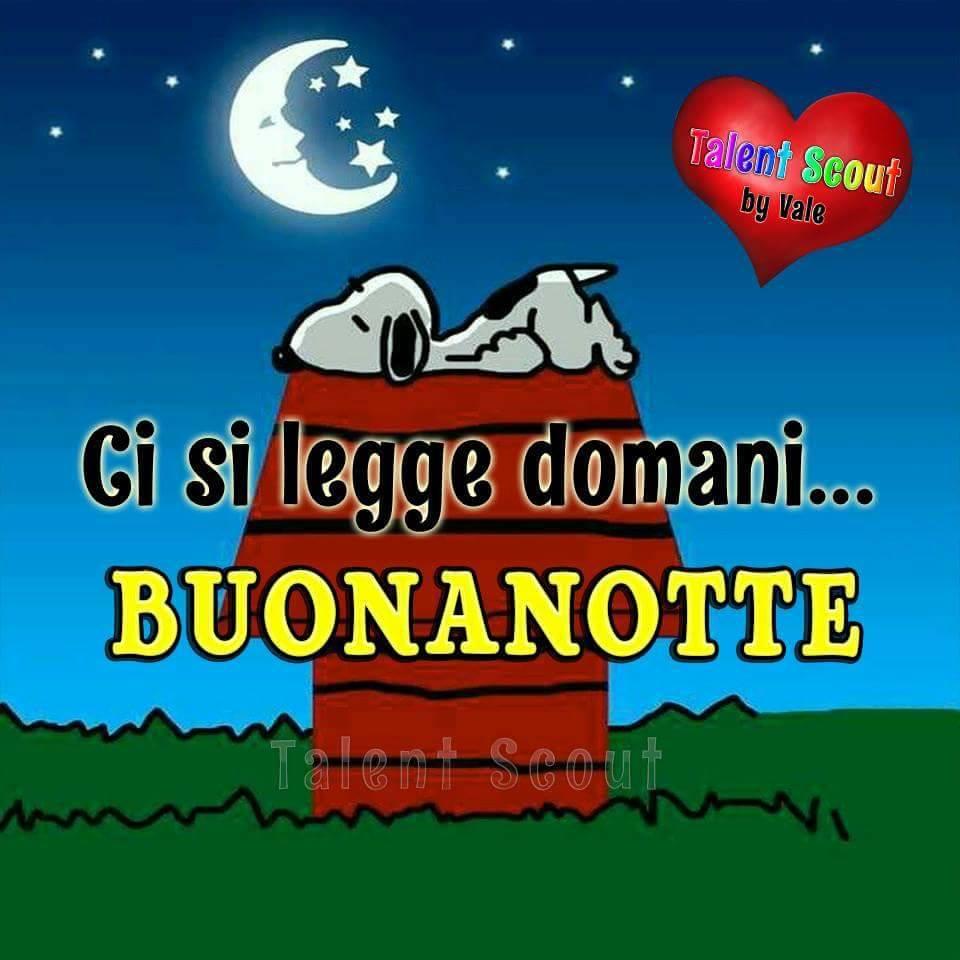 Buonanotte Snoopy A Domani