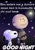 good-night-snoopy