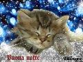 buonanotte-animata-gatto-che-dorme