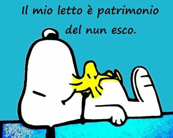 Snoopy Buonanotte Divertente